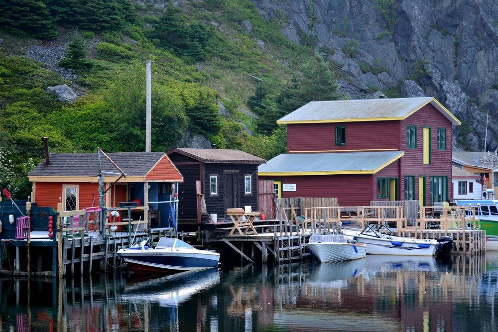 Newfoundland_013.JPG