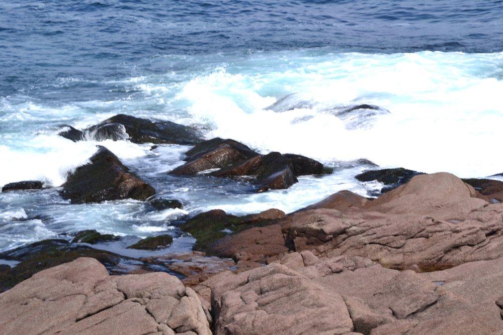 Newfoundland_147.JPG