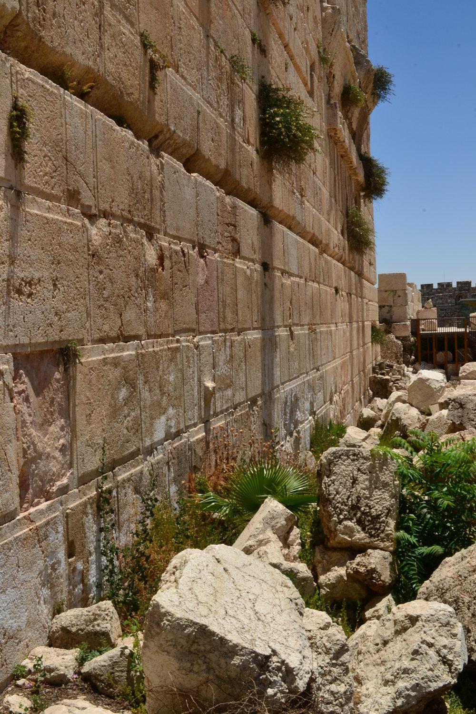 Israel_328.JPG