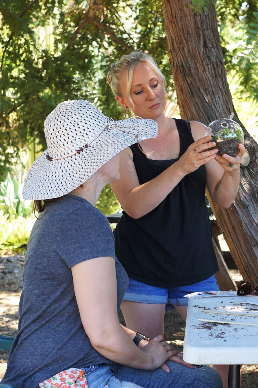 succulent terrarium workshop san francisco bay area