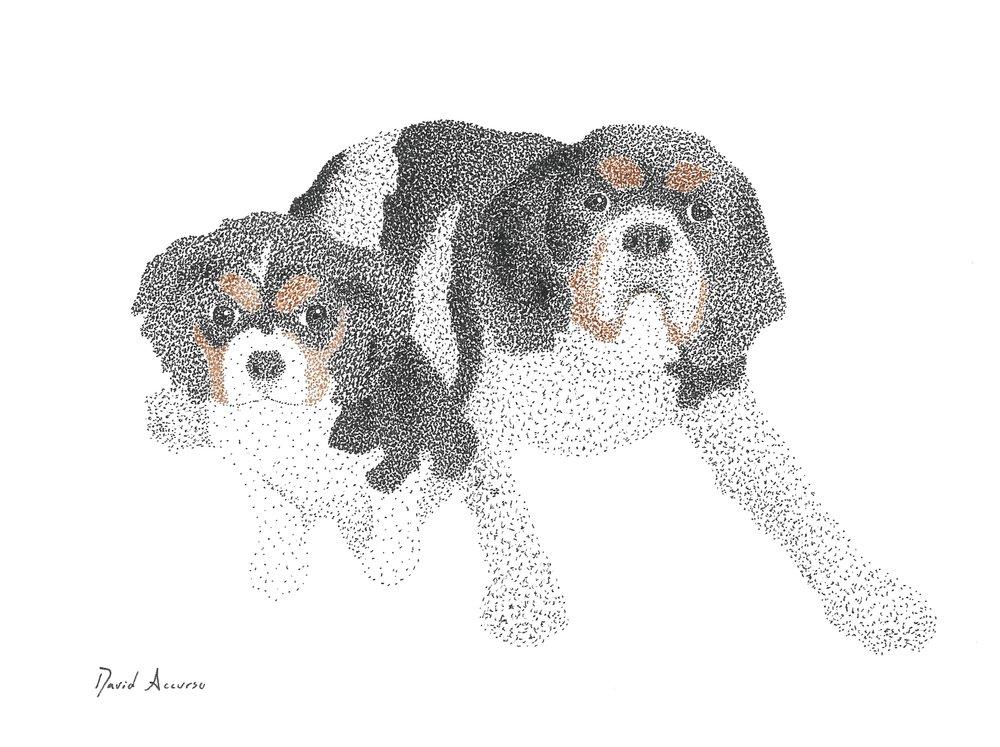 Luke & Rudy.jpg