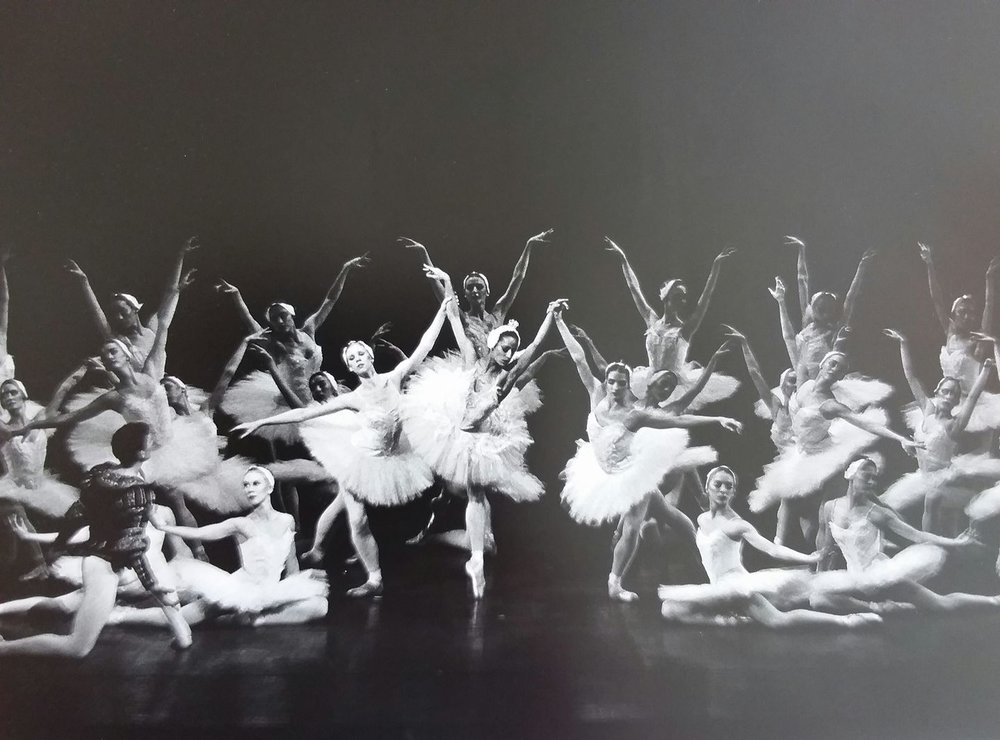 Debra Austin in Swan lake