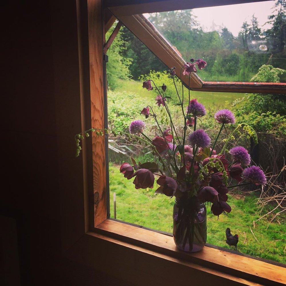 flowers in the rustic cabin at plum nelli farm washington.jpg
