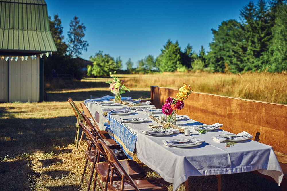 farm wedding outdoor dinner setting.jpg