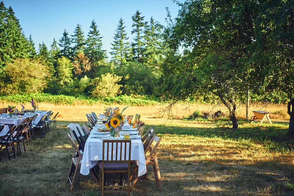 plum nelli outdoor wedding diner setting at farm wedding.jpg