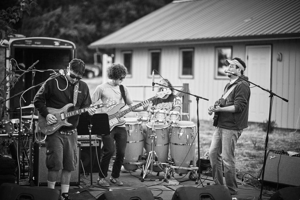the high council live funk concert port townsend washington at plum nelli.jpg