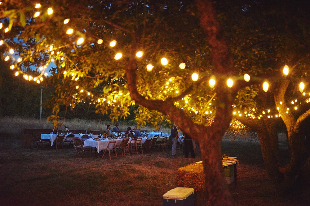 farm wedding outdoor dinner string lights at plum nelli farm wedding house