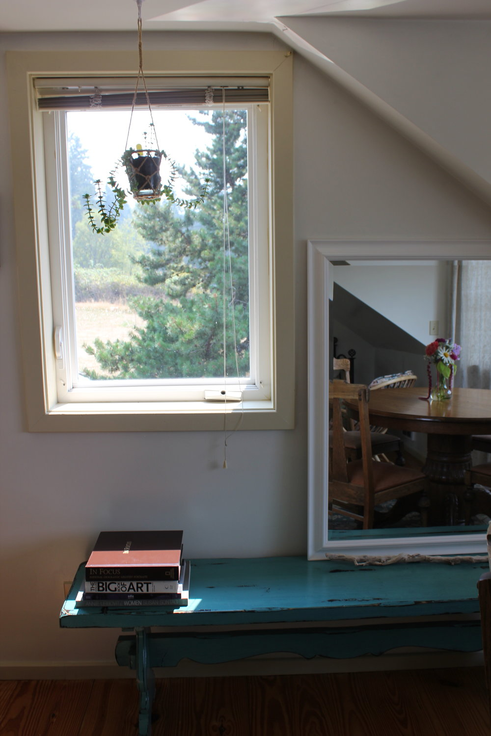 books with a view at plum nelli home rental washington.JPG