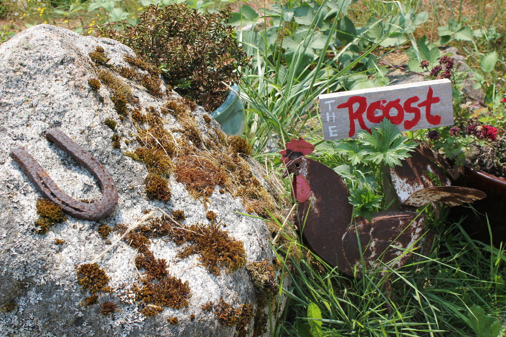 the roost sign rooster and horseshoe at plum nelli farm.JPG