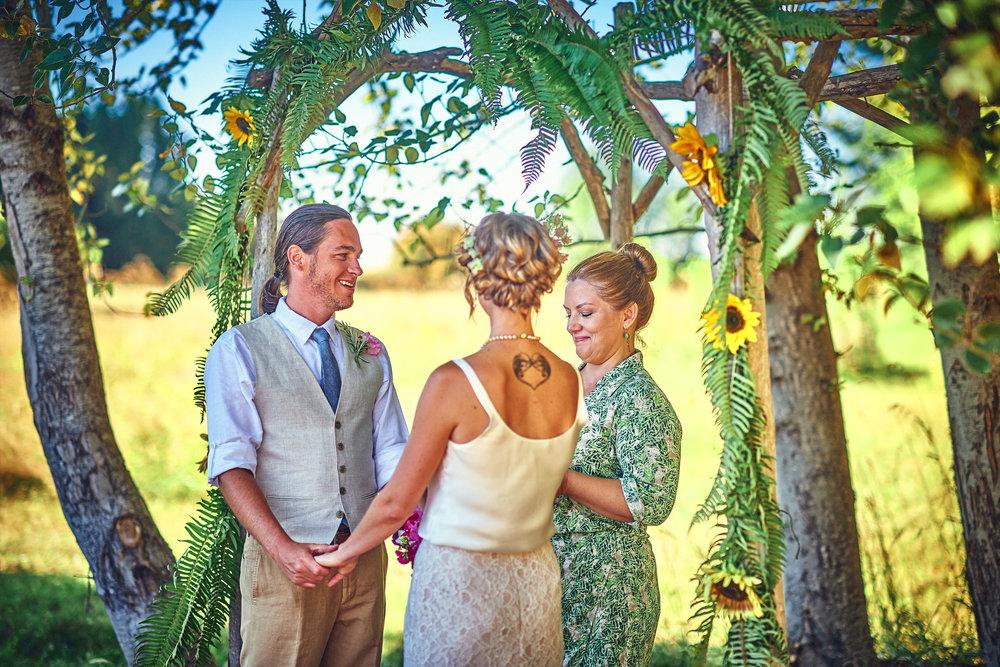 plum nelli farm wedding with arbor ferns and sunflowers farm wedding decor.jpg