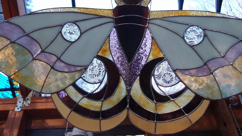 Gorgeous moth inside artist Neile Cooper's GLASS CABIN.