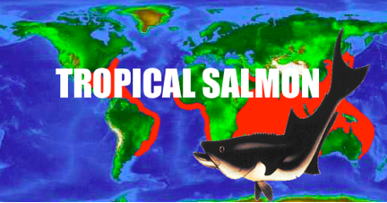 Tropical Salmon.png