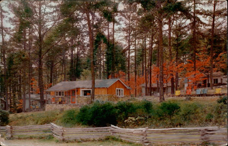 The Pines Cottages 1960's.png