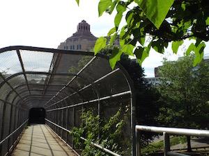 skywalkfromgwc.jpg