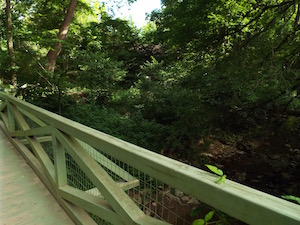 BotanicalBridge.jpg
