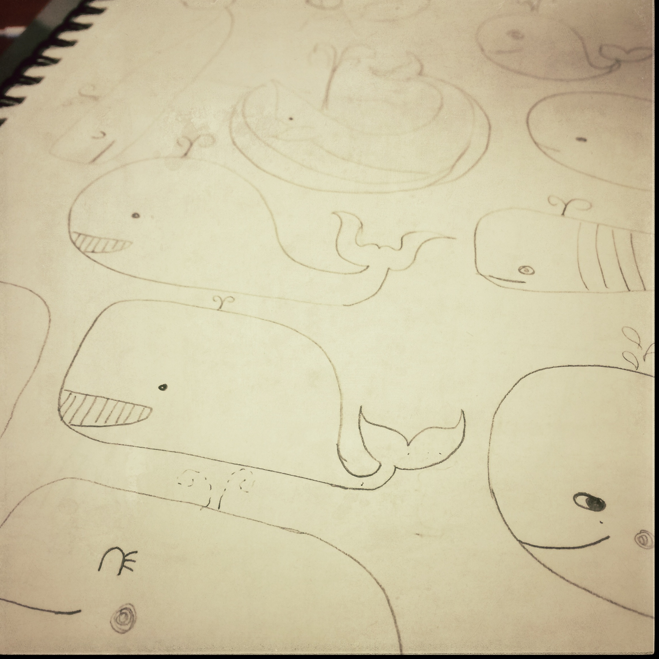 Whale Sketch