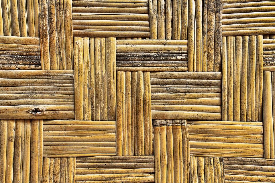 bamboo-870218_960_720.jpg
