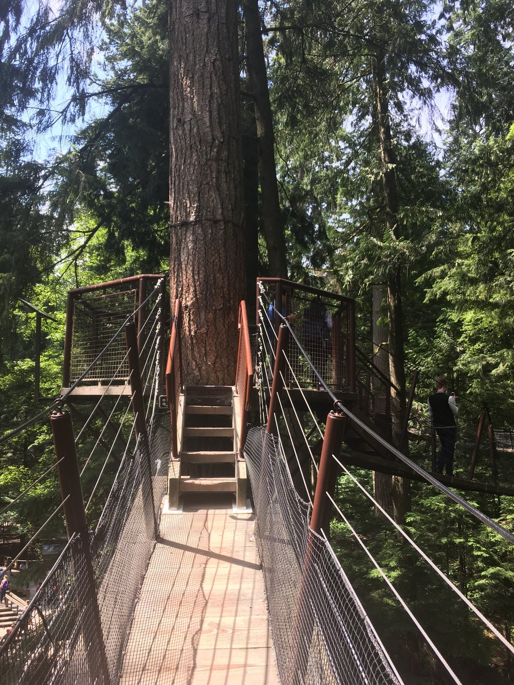 Trails at Capilano Park