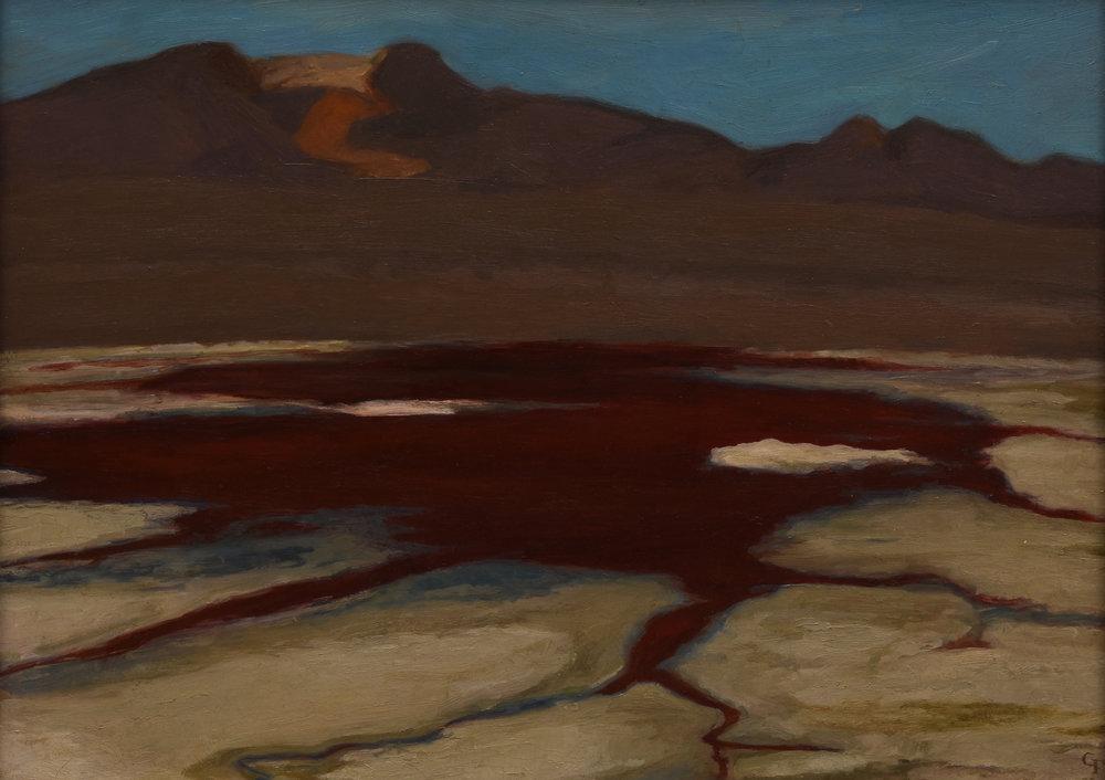 """Laguna Colorado, Bolivia, o/p, 12"""" x 16"""""""