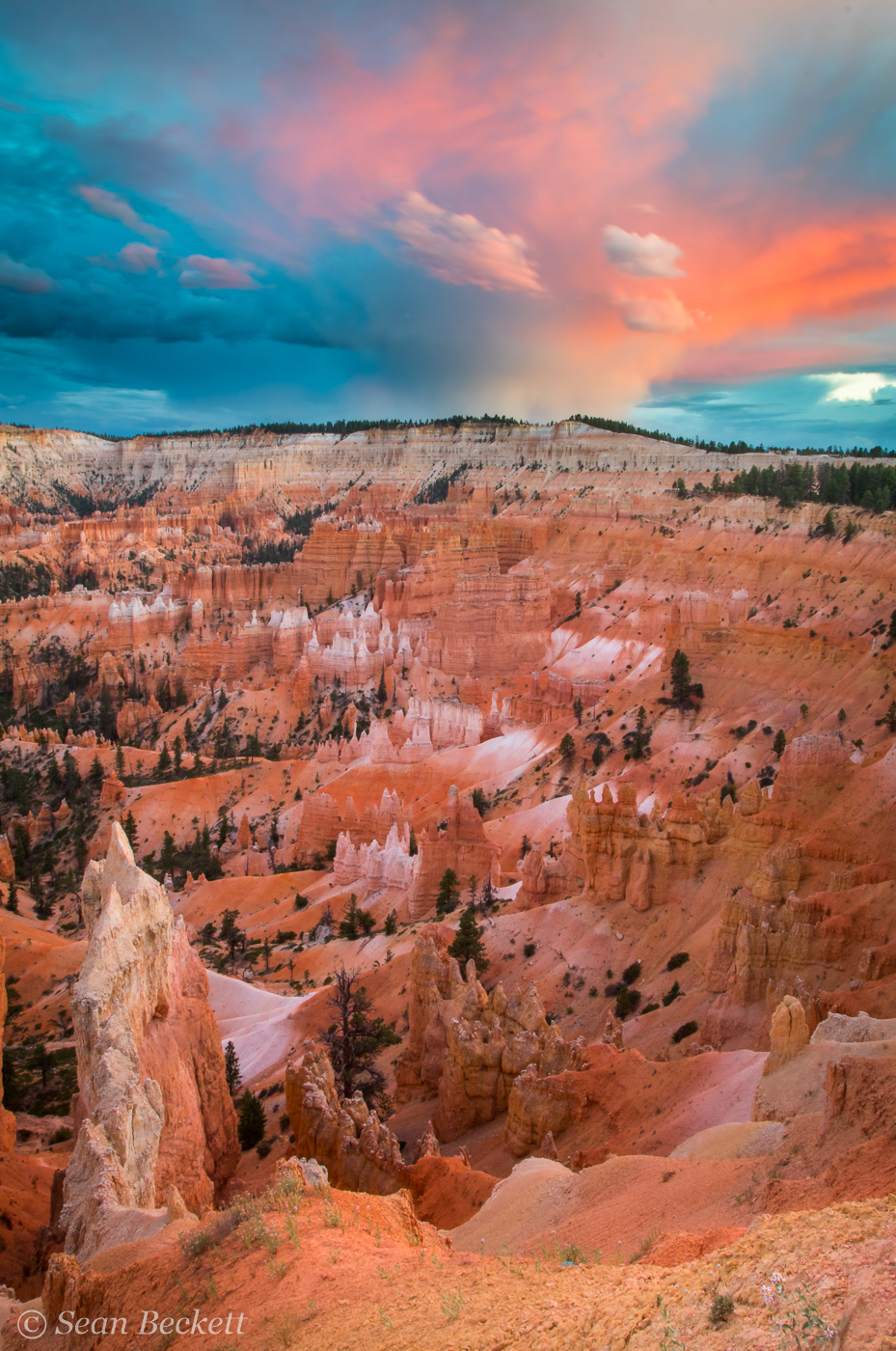 Southwest_Canyons_SB-2.jpg