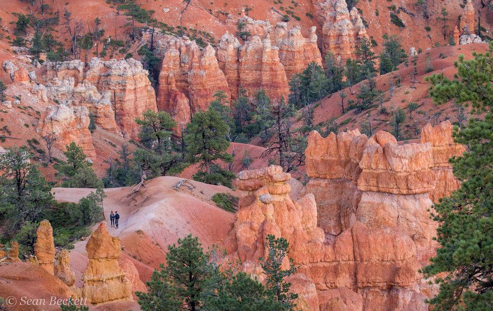Southwest_Canyons_SB-4.jpg