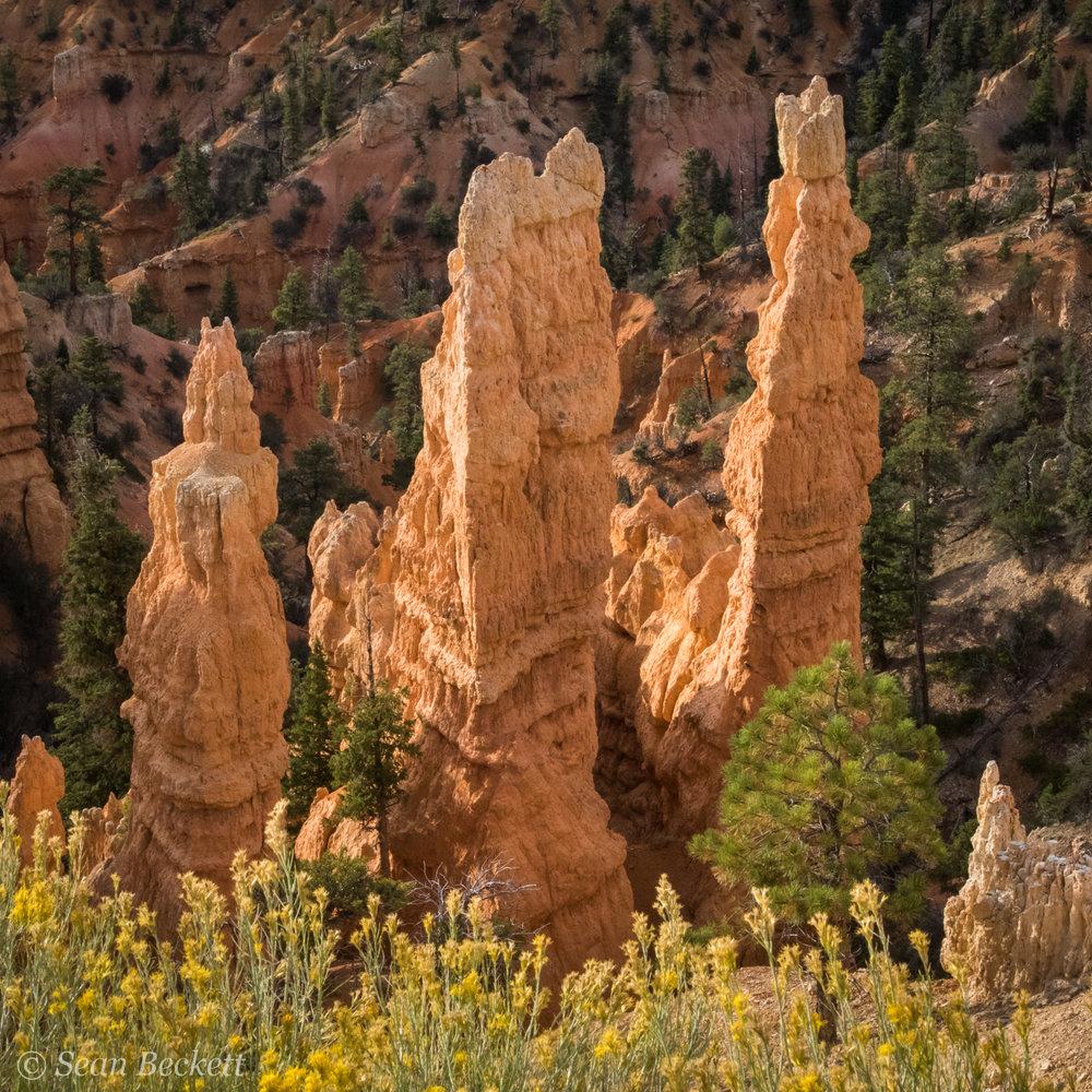 Southwest_Canyons_SB-3.jpg