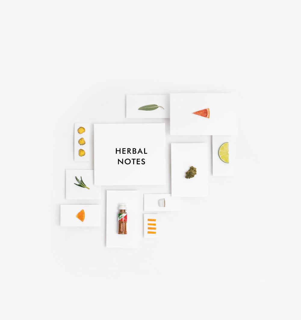 1x1 PRINT Herbal Notes.jpg