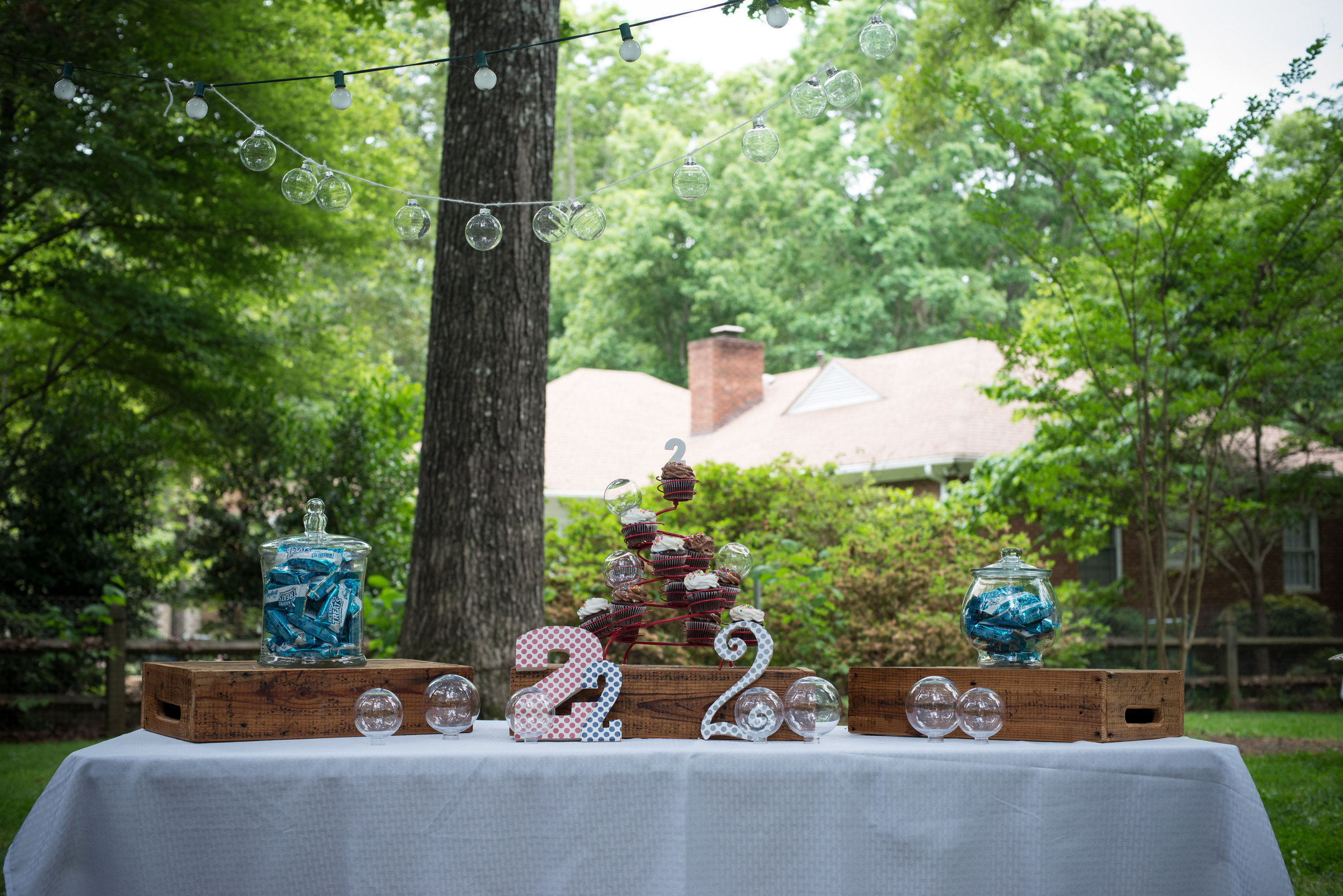 View More: http://christinemasonphotography.pass.us/charlie-backyard-bubble-bash