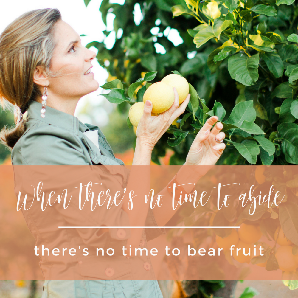 When there's no time to abide, there's no time to bear fruit. | www.wendyspeake.com