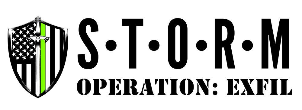 EXFIL Logo_Horizontal-01.jpg