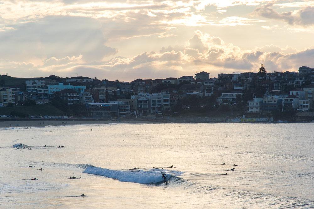 Sunrise surfing at bondi beach in sydney