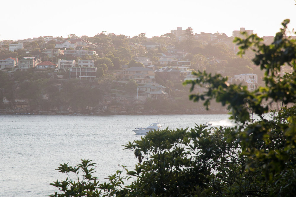 manly coastal walk in sydney
