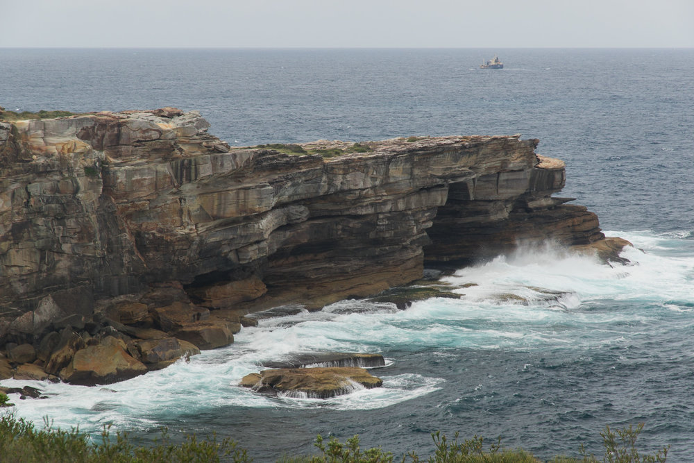 sydney harbour cliffs by the ocean