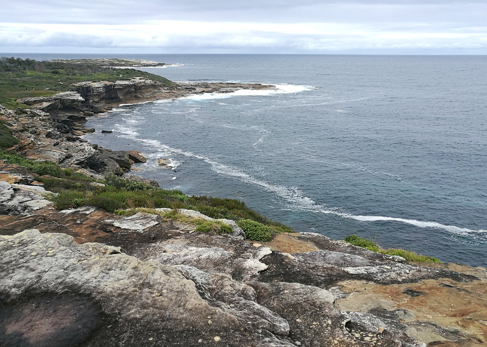 rocky coastline in sydney