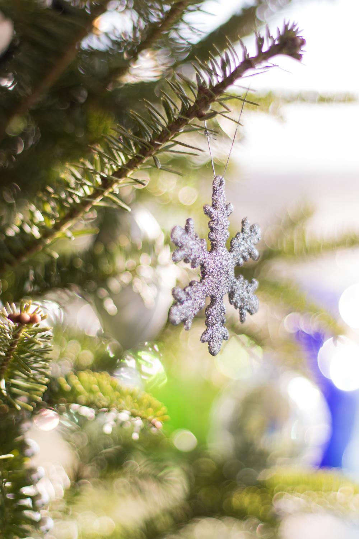 Christmas_lifestyle-2.jpg