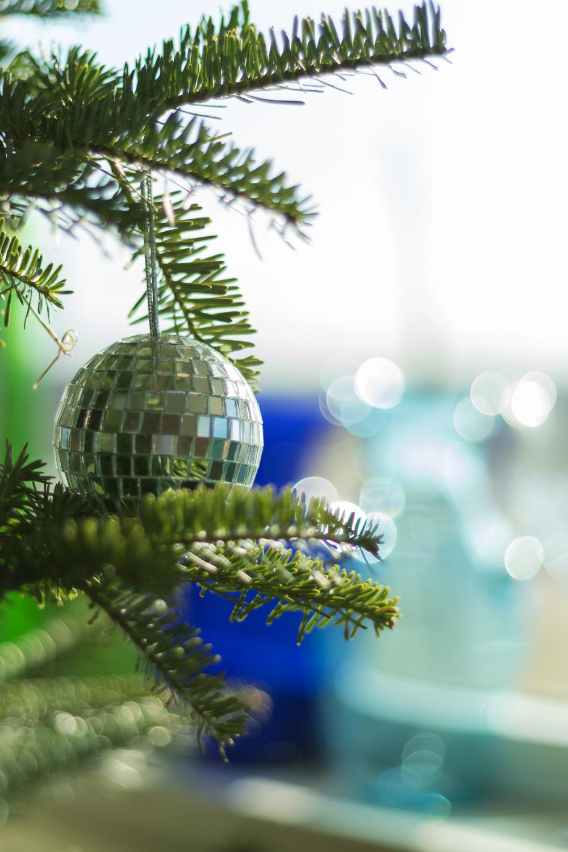 Christmas_lifestyle-3.jpg