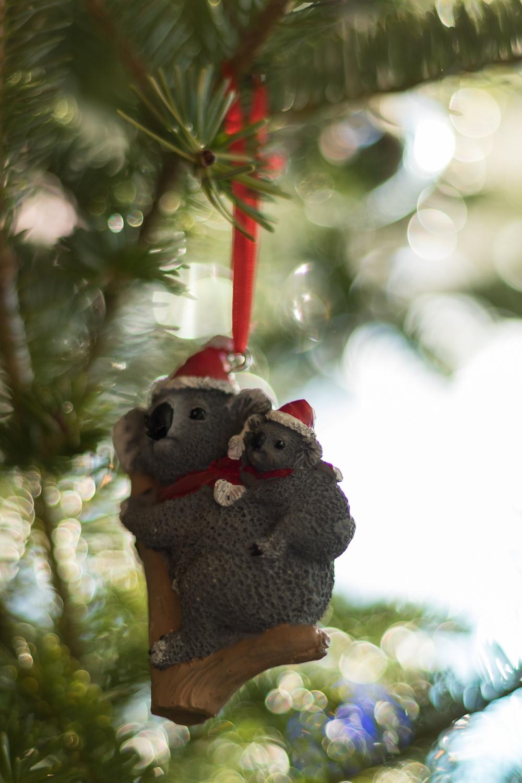 Christmas_lifestyle-5.jpg