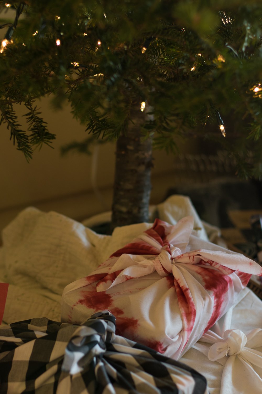 Christmas_lifestyle-20.jpg