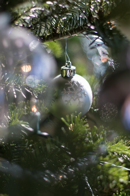 Christmas_lifestyle-6.jpg