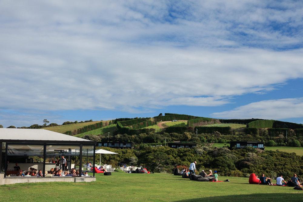 tourists enjoying wine on waiheke island