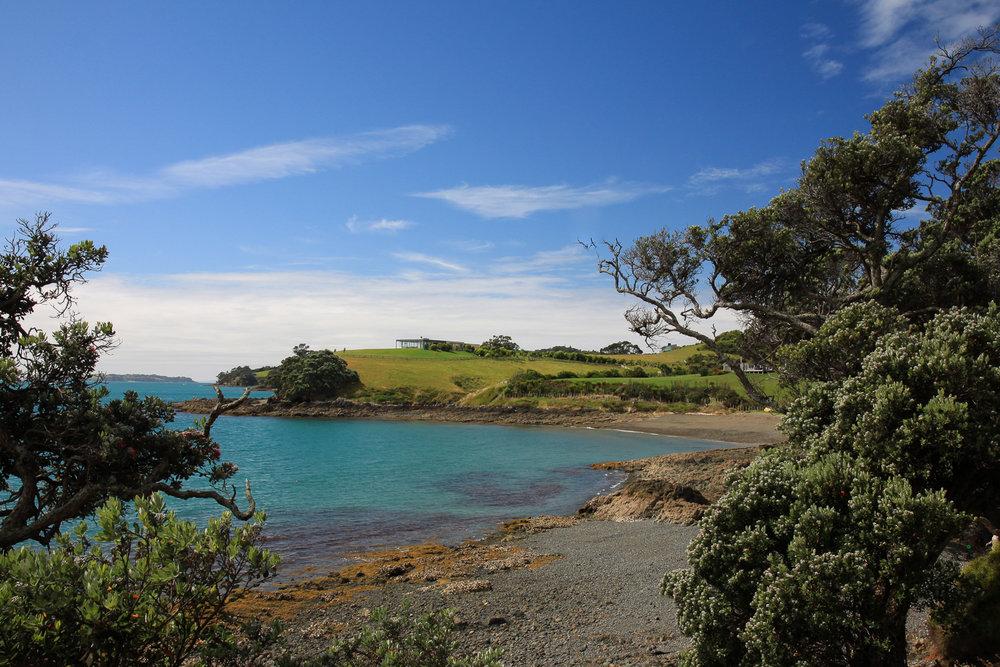 island bay in new zealand