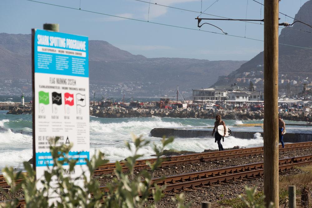 surfers walking across railroad
