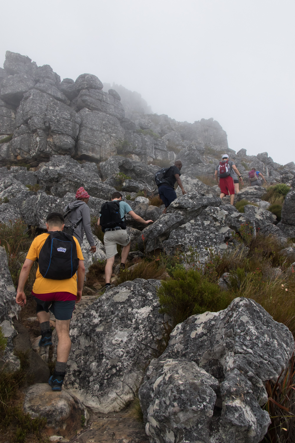 hikers climbing up table mountain