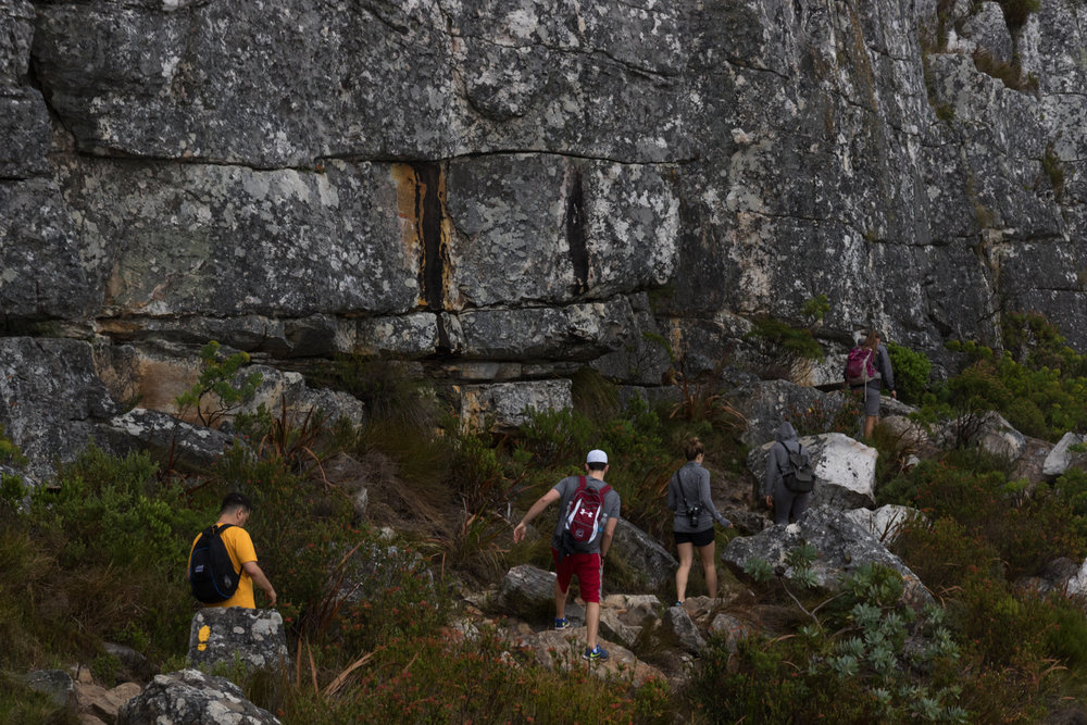 guided hike on table mountain