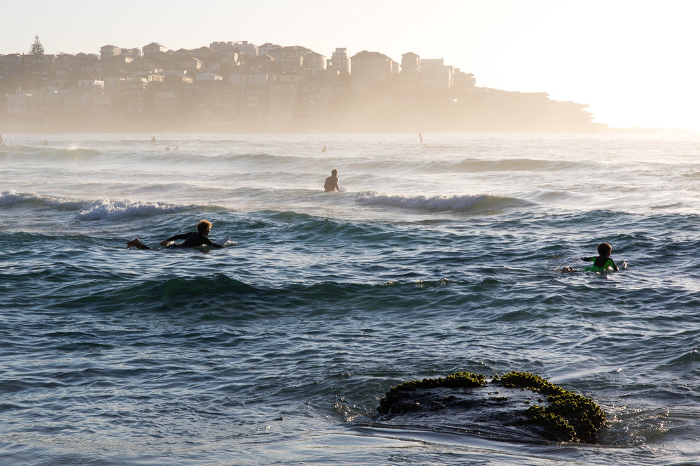 father_son_surf