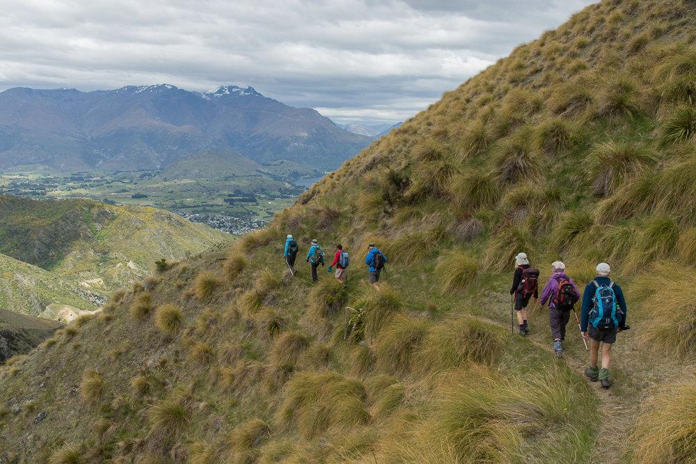 queenstown_hikers