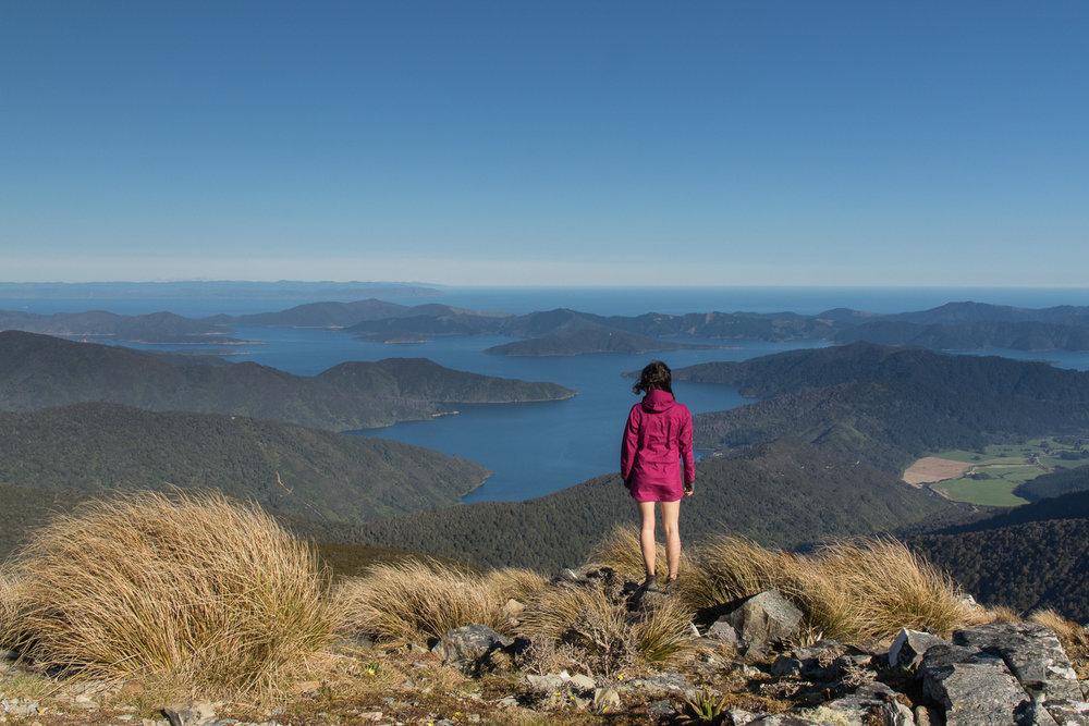 female hiker admiring view of marlborough sounds