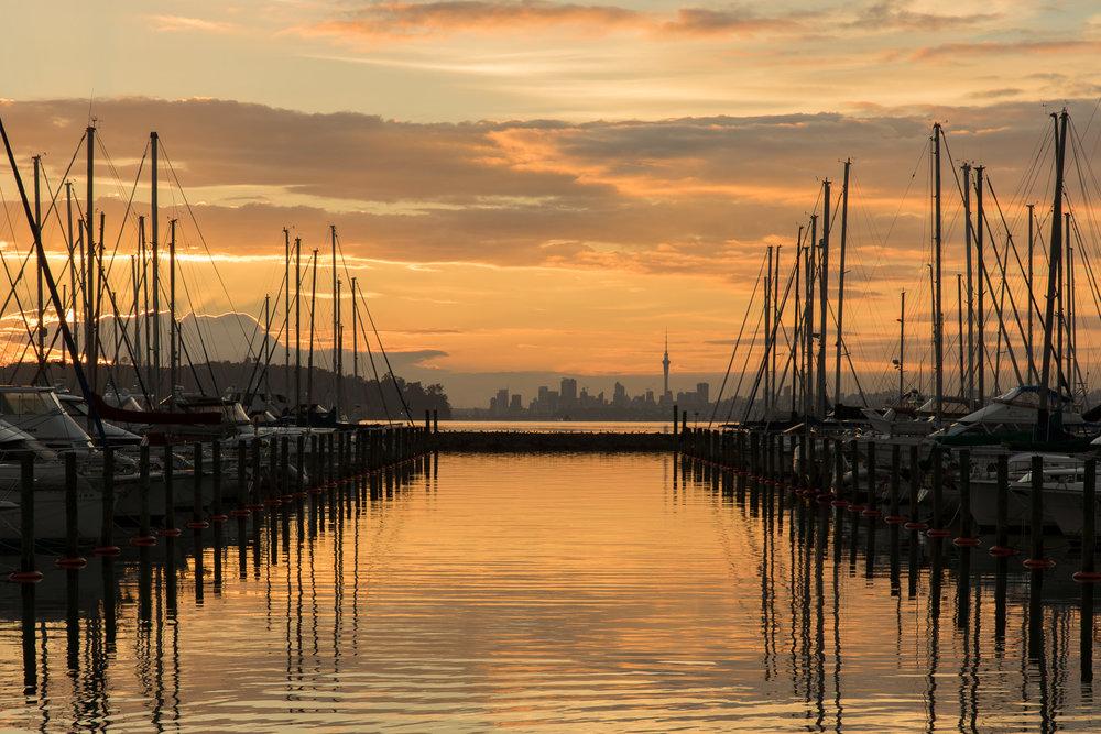 auckland_marina_sunrise