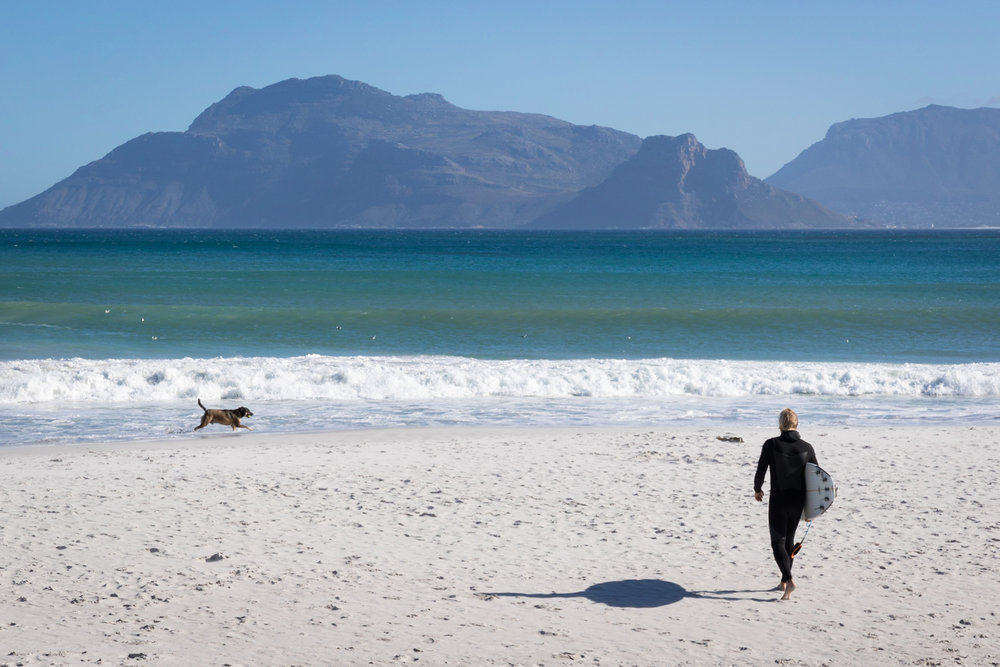 capetown_surfer_dog.JPG