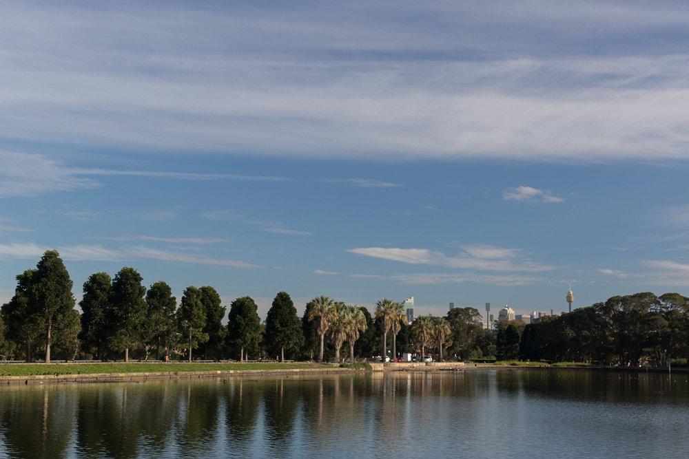 sydney_centennial_park